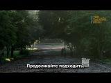Ходячие мертвецы - 4 сезон 9 серия / Отрывок / The Walking Dead